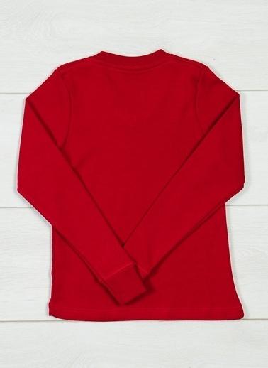 Grip Sweatshirt Bordo